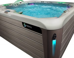 Spa Jacuzzi Quelle Difference